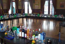 Cocktails en Catering / Shake cocktails en catering, mobiele cocktailbar en catering op locatie, ook voor een cocktailworkshop, gin tonic bar, cocktailbar op festivals en meer.
