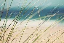 Beach & wa