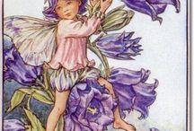 Cicely Mary Barker botaniczne karty z wróżkami