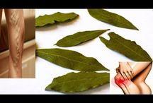Beneficios Del Aceite De Laurel