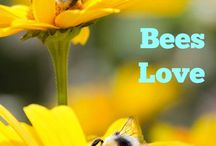 Bees:flowers that attract
