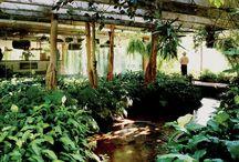 Espacios con vegetación
