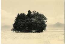 Masao Yamamoto / by Anastasia B.