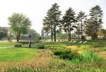 Maaspark