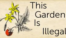 Hage / garden