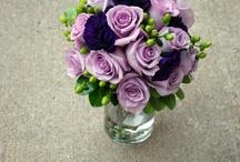 I love Purple / by Jacquelyn Grisham