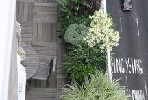 Rooftop & Balcony Gardens