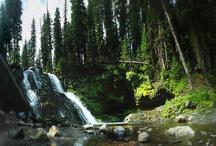 Bozeman Hikes / Hiking trails in and around #Bozeman #montana