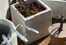 Grow / Get your garden started.
