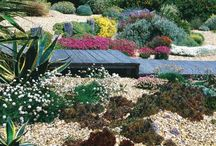 Coastal Garden Ideas