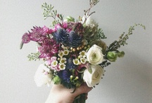 Blomstershow