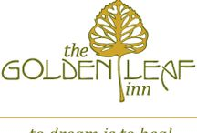 The Golden Leaf Inn / There is beauty all around us and we love to share! Enjoy!
