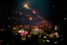 Smart Christmas Parties at Willows Farm, St Albans / Dazzling festive celebrations that excite & impress