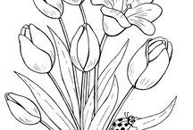 Grafico de flores