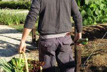 Newstead Vineyards & Gardens
