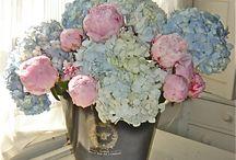 Floral arrangements / by Martha Cochran
