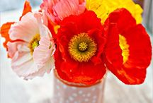 Cheerful Wedding Flowers