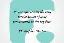 CPPD Academy Quotes / Here's a burst of motivation to get your CPPD business off the ground. Working with dogs is the best way to spend your day!