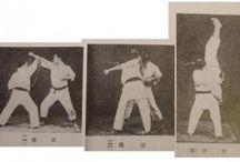 karate throws