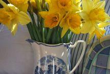 moje ulubione kwiaty-żonkile i ostróżki / by Anna B
