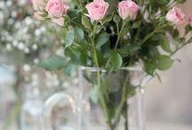 Flores / inspirações pra arranjos