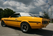Muscle Cars - Tribute to my Husbands Passion