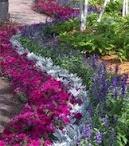 Flowering Gardening / by Trish Sousley