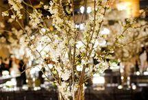 My Fairytale Wedding <3  / by Kelsey Nielsen