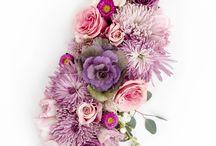 Flower Flatlay Photography
