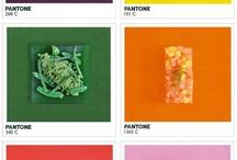 PANTONE / 컬러차트, 팬톤넘버