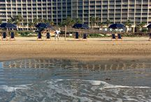Galveston Beaches / We groom our beach daily to ensure our guests a clean and relaxing beach experience.