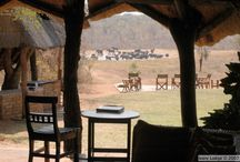 Ivory Lodge - Hwange National Park / A small intimate lodge featuring 7 luxurious tree houses and 2 Presidential Elephant Suites set on elevated platforms amongst the indigenous flora of Hwange Game Park. http://zimbabwebookers.com/