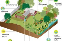 "DIY Green Infrastructure / Ever wanted to ""go green""? Try your own Green Infrastructure project!"