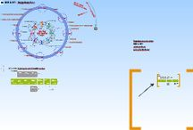 IKT & BIM