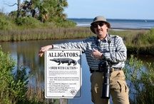 FLORIDA TRAVEL - Harbor Light Adventures / I specialize in all vactions to Florida and also provide hosted photography tours throughout Florida. I can plan a vacation for you or you can join us on one of our nature and sportsperson tours! http://www,harborlighttravel.com
