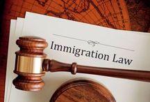 Immigration Lawyer UK
