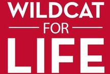 Wildcat for Life