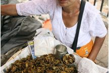 << Insects * Snails * Worms as Food >> / For more on this topic please visit the @GR2Food Archives @ http://gr2food.com/tag/insects-as-food/