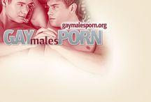 Gay Males Porn