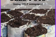 Gardening goodies / Plans, ideas and tips for all things garden  / by Ali St. John