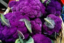Cauliflower Plants / Cauliflower is one of several vegetables in the species Brassica oleracea, in the family Brassicaceae. It is an annual plant that reproduces by seed