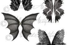 Mariposas y Alas