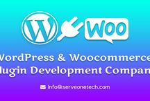 Web Design & Development Company / Serve One Tech is leading Web Design & Development Company in USA & India offers creative web solutions.