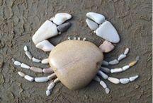 cangrejo en piedra