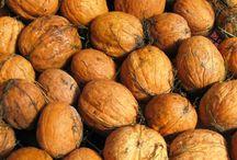 Nuts / by R Romero