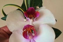 Wedding Buttonholes, Boutonnière and Corsages /  Flower ideas for your wedding or prom Ideas