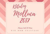 Molluca Terbaru 2017