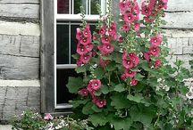 Nápady do domu  a zahrady / Šikovné nápady