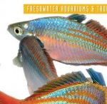 AMAZONAS Magazine / The official Pinterest home of AMAZONAS Magazine, published by Reef To Rainforest Media, LLC