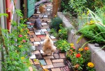 Gardening: Pathways And Walkways
